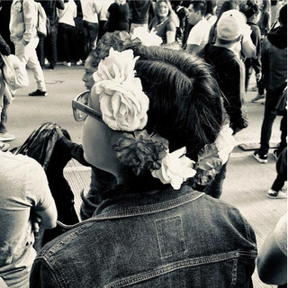 Claudia Shapiro, Portafolio Blanco y Negro, Urbanismo