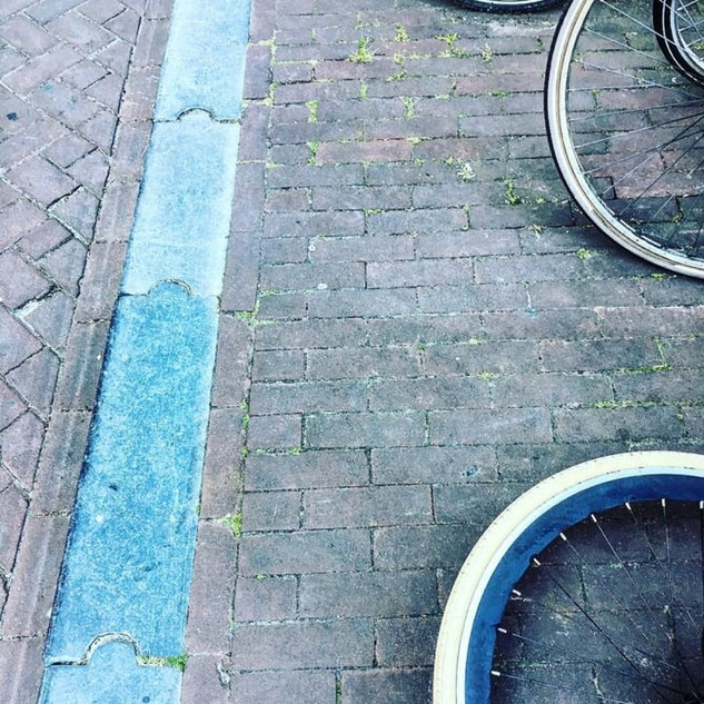 Claudia Shapiro, Portafolio Color, Urbanismo