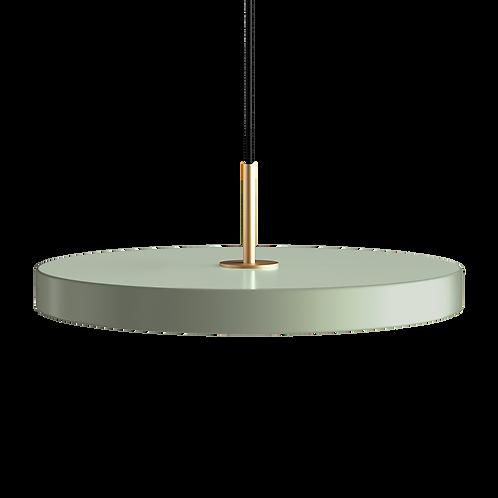 UMAGE Asteria Nuance - Medium - Olive - Brass Top