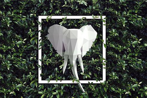 Elephant trophy 1.1.2.jpg