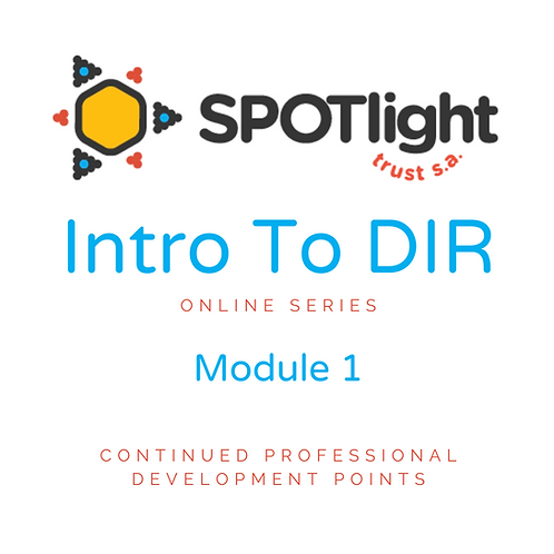 Introduction to DIR:Floortime Online Series CPD points