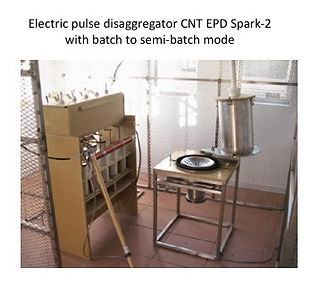 Electric pulse disagregator