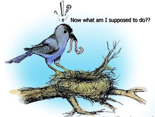 Empty Nest Syndrome, Not