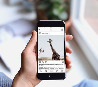 Instagram Flandria reizen