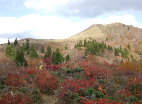 紅葉の武奈ヶ岳