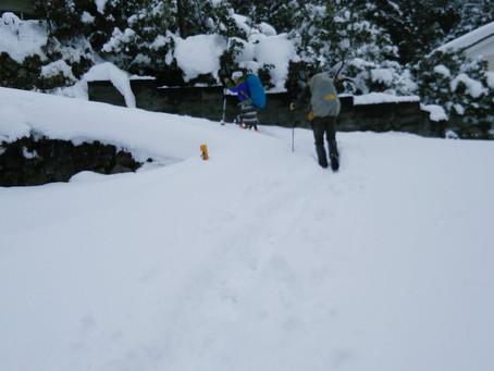 今日は愛宕山に雪遊び