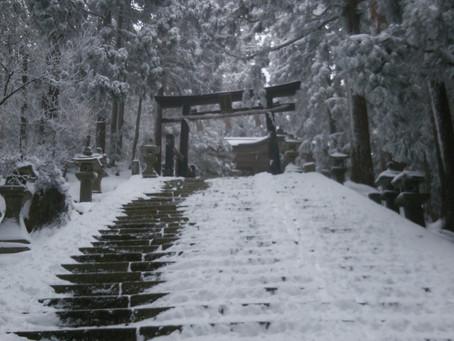 愛宕山で雪遊び