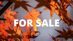 Selling your home this fall......