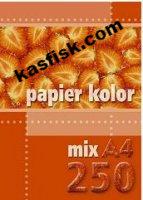Papier xero A4 (250) mix kolorów KRESKA pp 276