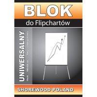 Papier do FLIPCHARTÓW 10 k. krat 65*100     blk198