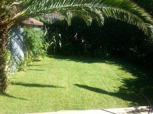 T3 rénové avec jardinet privatif