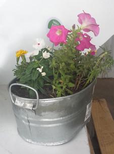 Creating a stock tank garden