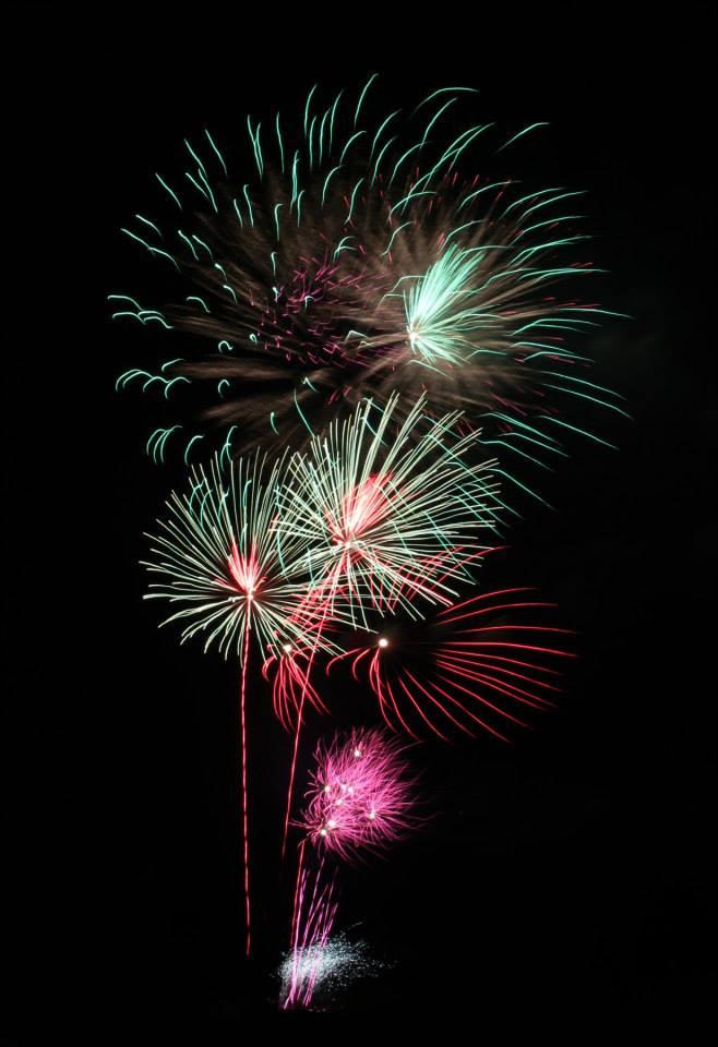 fireworks horses
