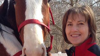 Ideas for Decreasing Heat Stress in Horses