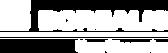 Borealis_logo_white.png