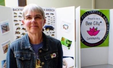 Pollinator Champion Feature: Susan Blayney