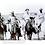 Thumbnail: Louisiana Cowboys