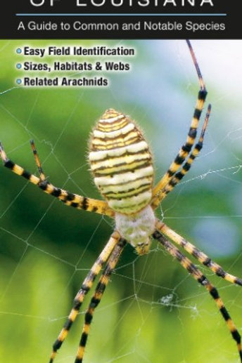 Spiders of Louisiana: A Guide to Common and Notable Species