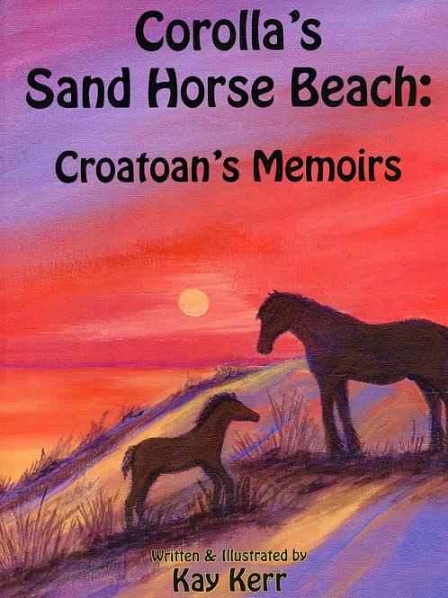 Corolla's Sand Horse Beach