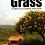 Thumbnail: Trampled Grass