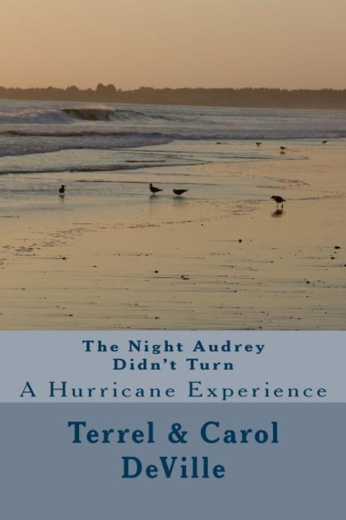The Night Audrey Didn't Turn: A Hurricane Experience