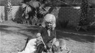 Jayne & pets