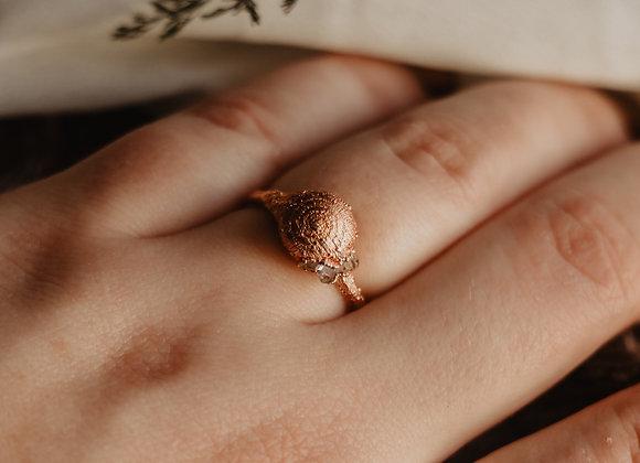 Snail Shell & Herkimer Diamond Ring - Size 6