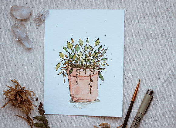 "'Leaves in Planter' 4.5""x6"" Watercolor"