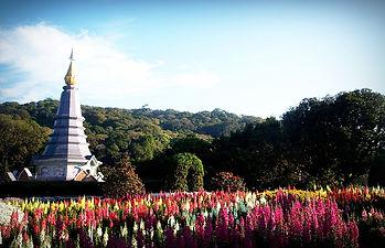 visite temple nord thailande doi inthanon
