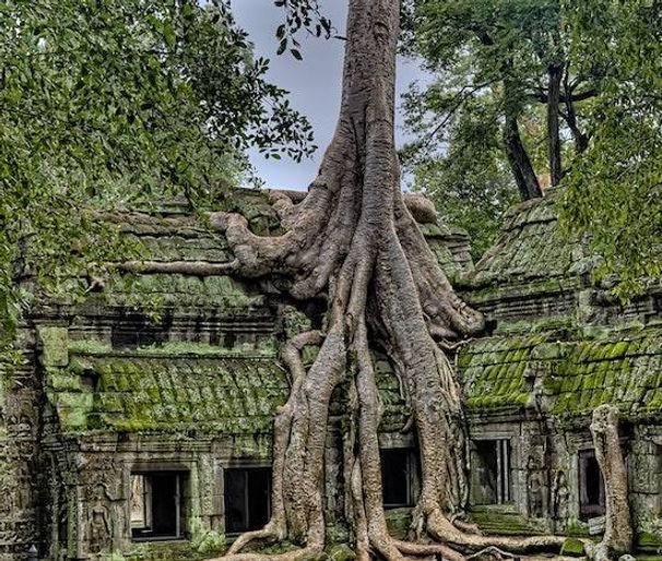 voyage cambodge temple angkor