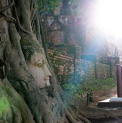 parc ayutthaya