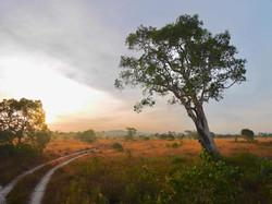 route thailande