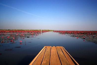lac lotus thailande hors des sentiers battus