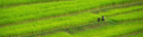 agence de voyage francaise locale thaila