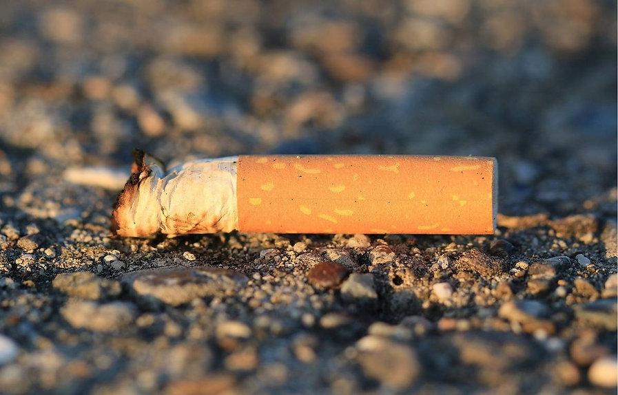 1200x768_megot-cigarette-jete-terre.jpg