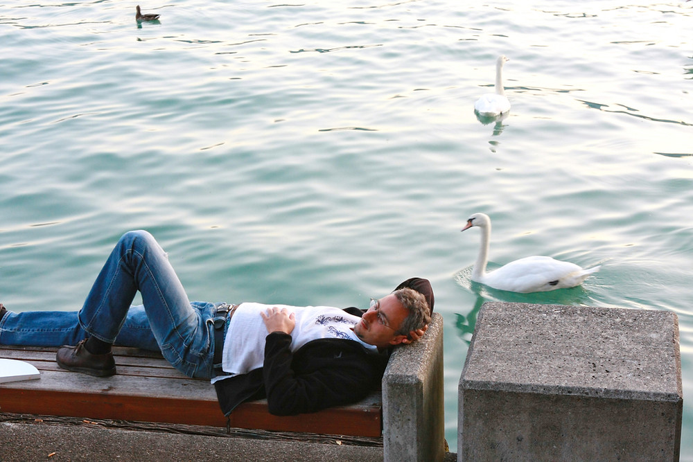 Image of a guy resting on a concrete bench next to a lake with swans. Raleigh Psychotherapy, counseling, Katherine Broadway