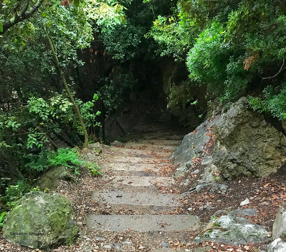 Image of a stone path through a wooded area. Raleigh Psychotherapy, counseling, depression, shame, Katherine Broadway