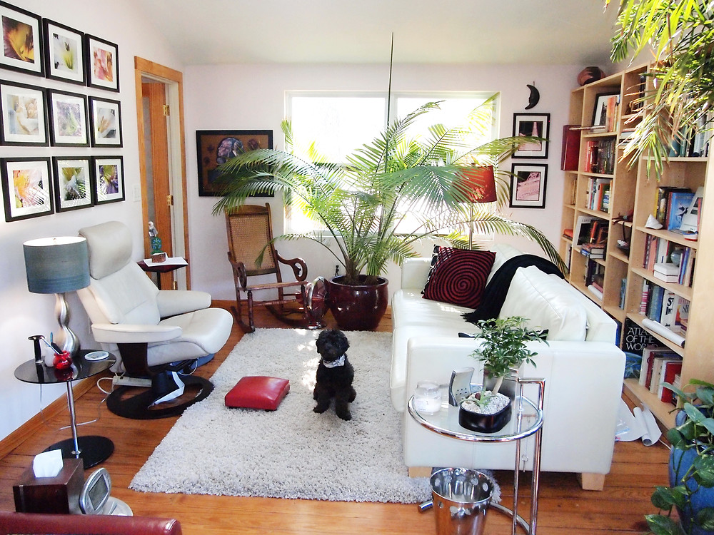 Image of Katherine Broadway's office with dog, counseling, Raleigh Psychotherapy, psychoanalysis