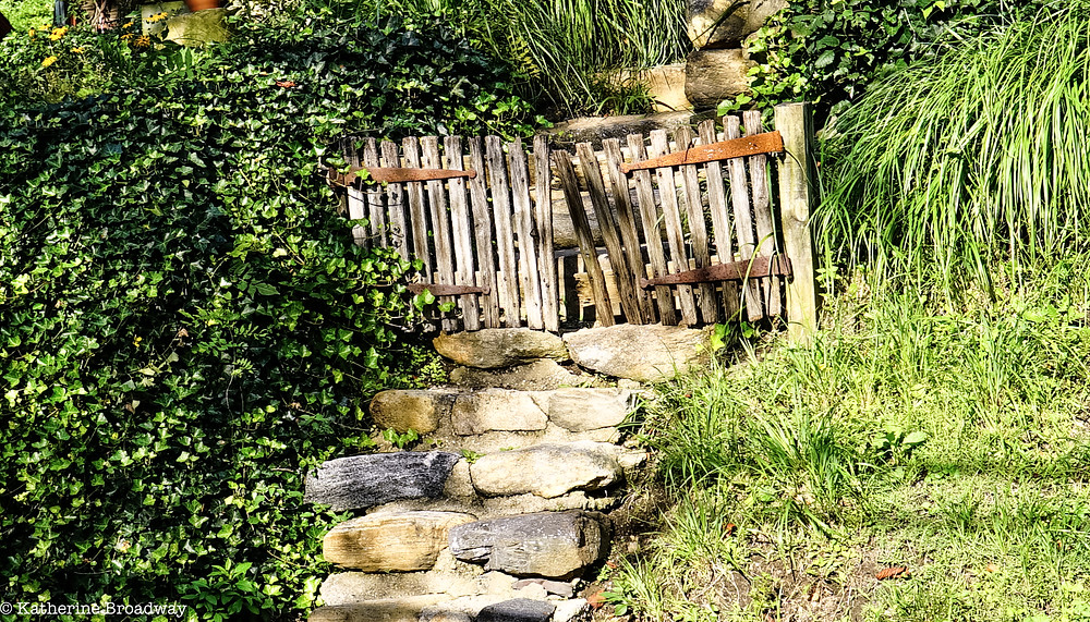 Image of stone steps and wooden fence in green setting. Raleigh Psychotherapy, counseling, imperfection, Katherine Broadway