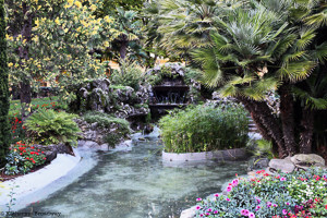Image of garden stream. Raleigh Psychotherapy, Katherine Broadway, counseling, meditation