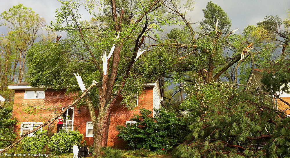 Image of brick house with large broken tree branch in the yard. Raleigh Psychotherapy, counseling, Katherine Broadway, destruction