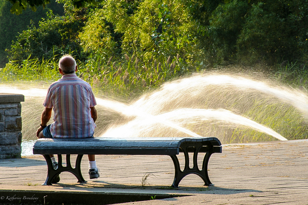 Image of elder man sitting on iron bench watching sprinklers in a park. Raleigh Psychotherapy, Katherine Broadway, counseling, Mindfulness