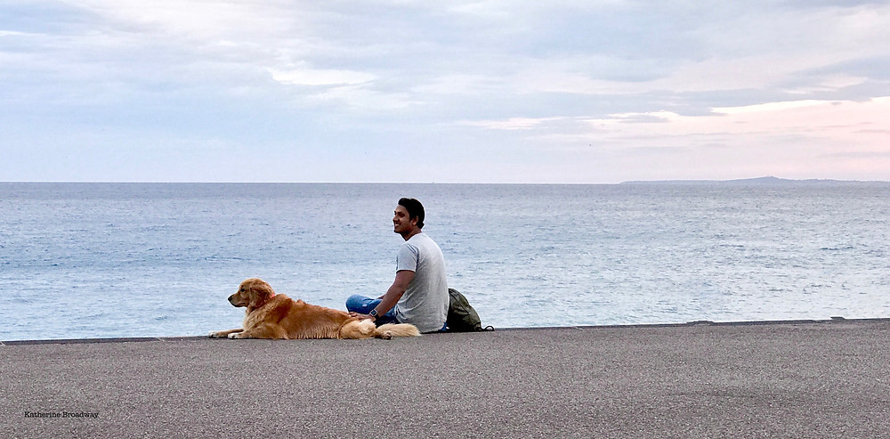 Image of man and dog sitting on a beach. Raleigh Psychotherapy, Counseling, Valentine's Day, Katherine Broadway