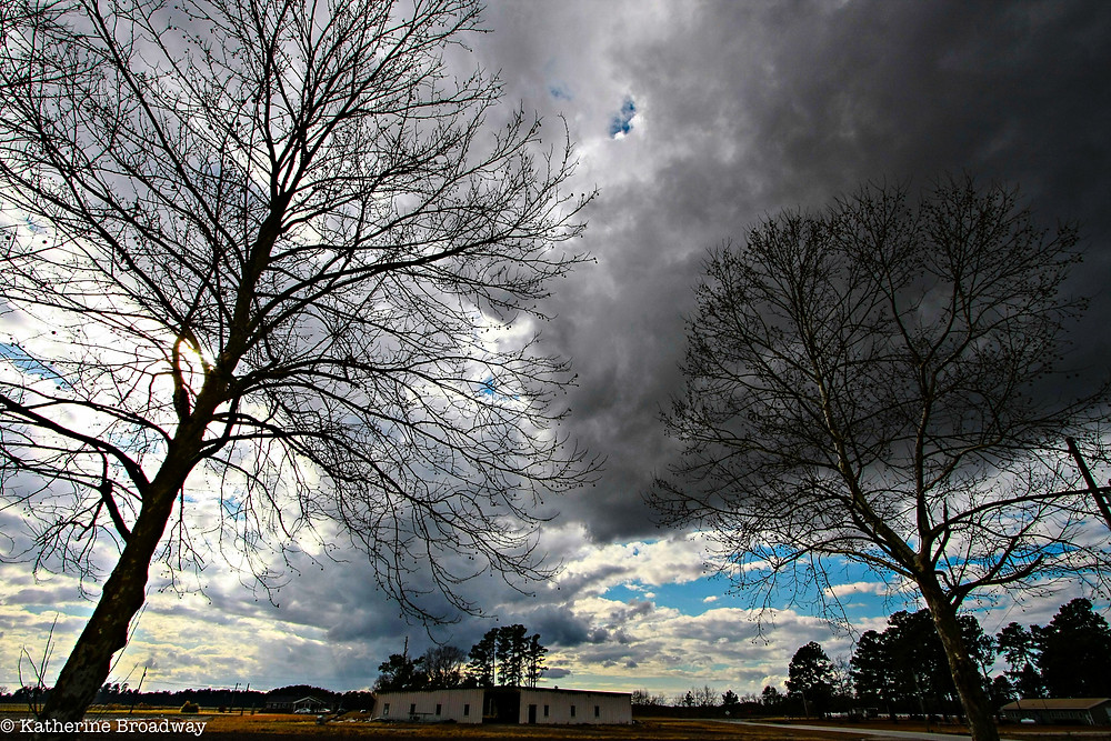 Image of dark clouds and winter trees.