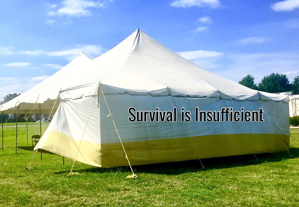 """Image of big white tent on which is written """"survival is insufficient"""".Raleigh Psychotherapy, counseling, Katherine Broadway, survival"""