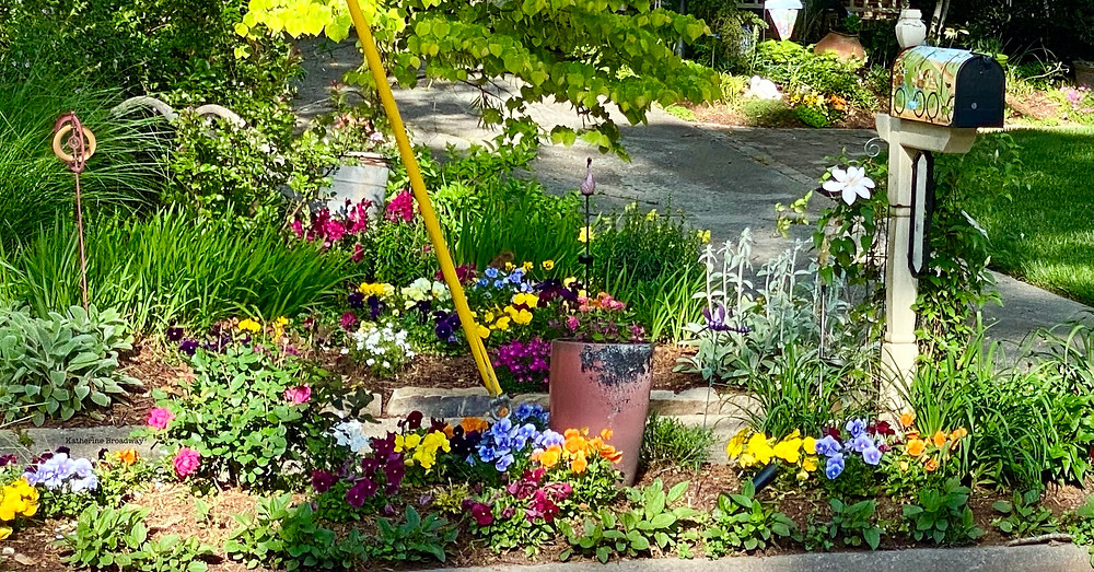 flowers in a garden, empathy, Raleigh Psychotherapy, counseling
