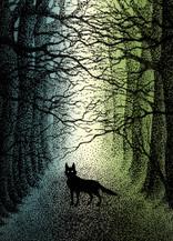 postcard-wolf-forest.jpg