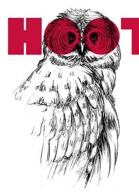 postcard-owl.jpg
