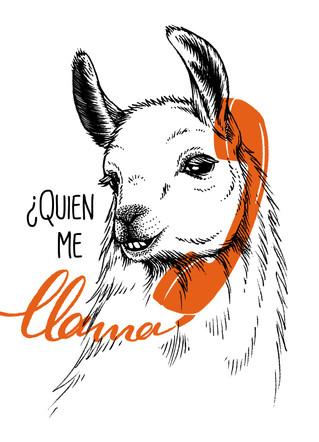 postcard-llama.jpg