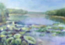 When the Lotus Visited Yellowwood Lake.j